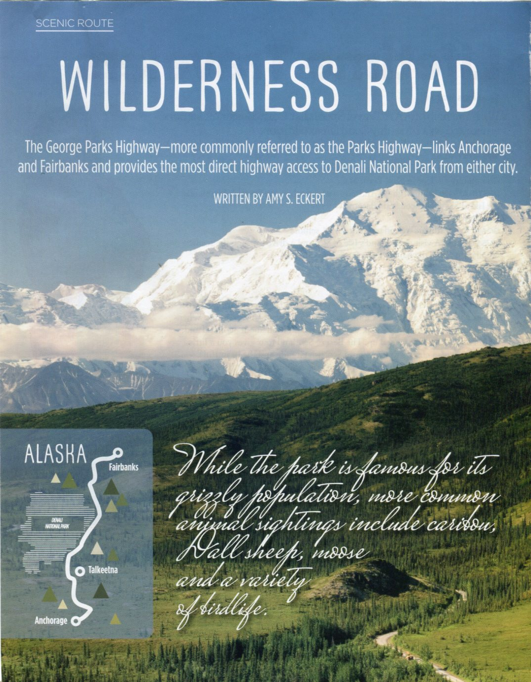 Alaska Wilderness Road001